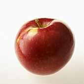 Ein Apfel der Apfelsorte McIntosh
