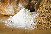 Bread, cereal grains and flour