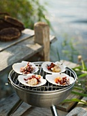 Grilled scallops by sea