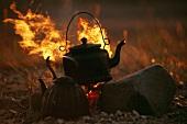 Kettle on campfire (Chukotka, Siberia, Russia)