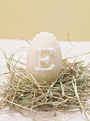 Marzipan egg in Easter nest