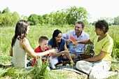 Young family picnicking with friends