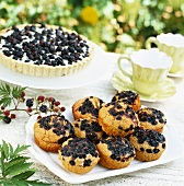 Blackberry tart and blueberry muffins on table out of doors