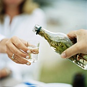 Pouring herbal liqueur into glass (Midsummer, Sweden)