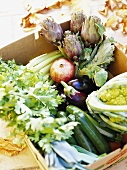 Assorted vegetables in a box