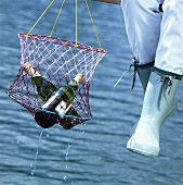 Person on landing stage holding beer bottles in net