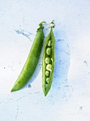 Two pea pods, one opened