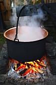 Steaming pot over a campfire (Sweden)