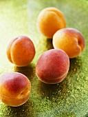 Five fresh peaches