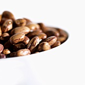 Borlotti beans in small bowl