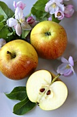 Two whole apples and half an apple with blossom