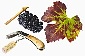 Corkscrew, grapes and vine leaf