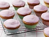Fairy cakes on cake rack