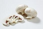 Button mushrooms and mushroom slices