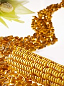 Corn on the cob and corn kernels forming a 'road'
