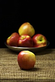 Apple with a Dish of Apples