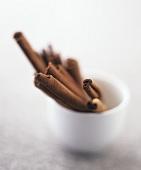 Several cinnamon sticks in a small pot