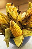 Grilled corn cobs with chilli