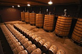 Wine in wooden barrels