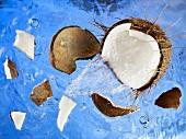 Eine Kokosnuss fällt in ein Wasserbecken