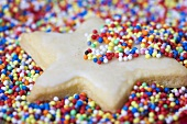 Iced biscuit with hundreds and thousands