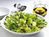 Mixed salad leaves with olive oil