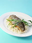 Fillet of brook charr on lemon grass risotto
