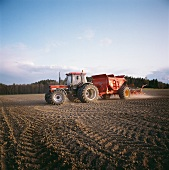 Tractor sowing in a field