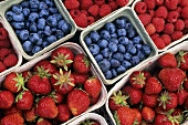 Strawberries, blueberries & raspberries in cardboard punnets