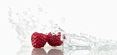 Raspberries with splashing water