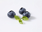 Three blueberries