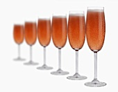 Several glasses of rosé sparkling wine in a row
