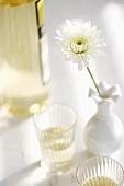 Glass of White Wine; White Flower in Vase