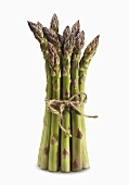 Asparagus Bundle Tied on White Background