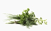 Fresh Herb Bouquet