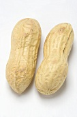 Two unshelled peanuts