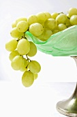 Green grapes in a fruit boal