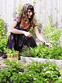 Frau sammelt Kräuter im Garten