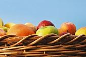 Basket of fruit (detail)