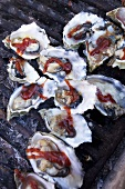 Barbecue Oysters on Half Shell