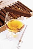 Glass of cognac and cigars
