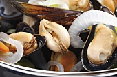 Mussels with onions (Rhineland style)