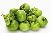 Grüne Rispentomaten (unreif)