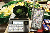 Savoy cabbage on supermarket scale