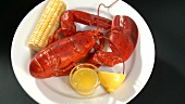 Cooked lobster with corn on the cob and butter sauce