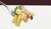 Rigatoni with mushroom sauce on fork