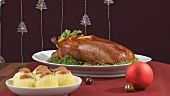 Roast duck, red cabbage and potato dumplings for Christmas