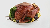 Roast turkey with autumn decorations on silver platter