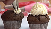 Decorating chocolate cupcakes with cream
