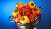 Washing peppers in a colander